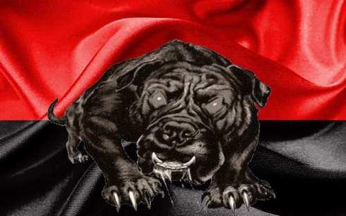 Собаки спущены с цепи (дополнения)