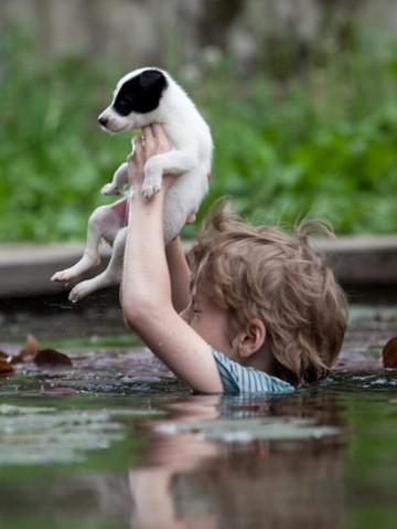Люди, вызывающие восхищение не только  смелостью, но и добротой