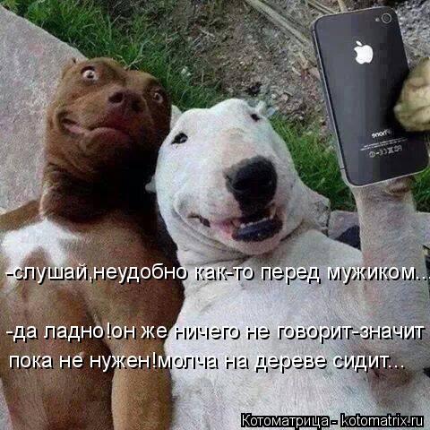 http://e-news.pro/uploads/posts/2017-10/1507846914_e-news.su_zdobuly-82.jpg